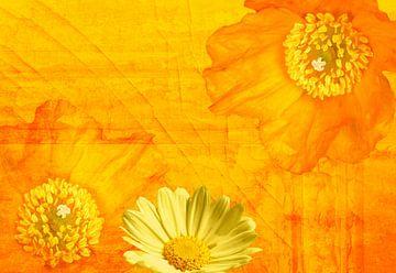 Leuchtend Orange von Martina Fornal