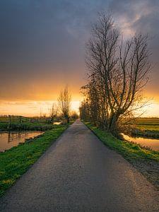 Zonsondergang Berkenwoude van Wilbert Tintel