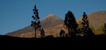 Vulkanisch landschap El Teide van Hannie Bom