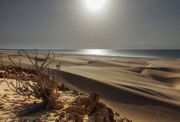 De zandduinen van Boa Vista van
