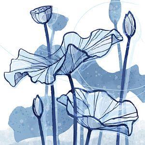 Lotus Delfstblauw 02