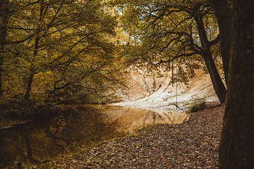 Neerbeek in der Nähe des Litsbergs im Leudal-Tal von ElkeS Fotografie