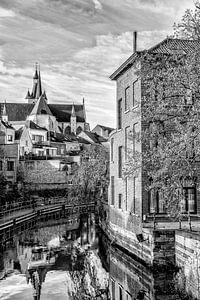 Onze Lieve Vrouwe over de Dijlekerk in Mechelen