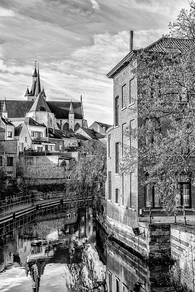 Onze Lieve Vrouwe over de Dijlekerk in Mechelen van Don Fonzarelli