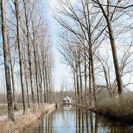 Spel van reflectie in Puyenbroek - bomen en water van Marie-Lise Van Wassenhove