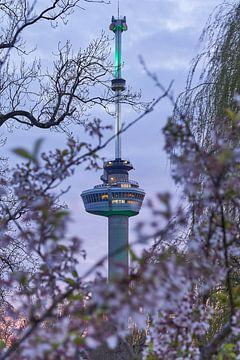 Euromast Rotterdam von EdsCaptures fotografie