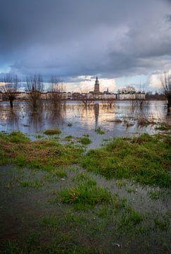 Hoog water aan de IJssel bij Zutphen van Arnold van Rooij