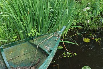 Groen stilleven aan de waterkant. van