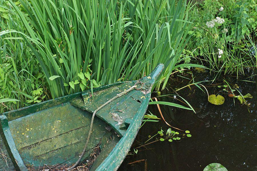 Groen stilleven aan de waterkant.