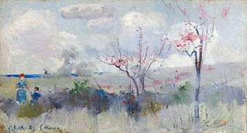 Charles Conder-Herrick s Blüte