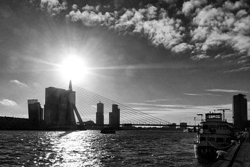 Port of Rotterdam van Bob Bleeker