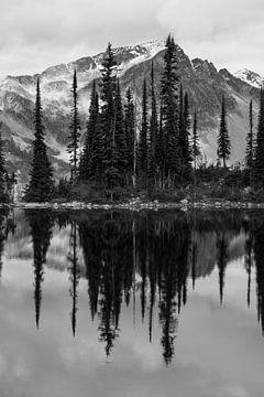 Staande reflectie zwart/wit van berg en bomen in Canadees meer van Milou Mouchart