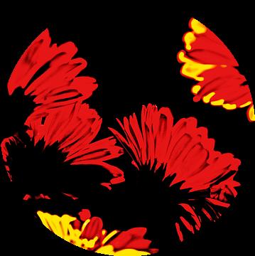 rood, geel en zwart van Hanneke Luit