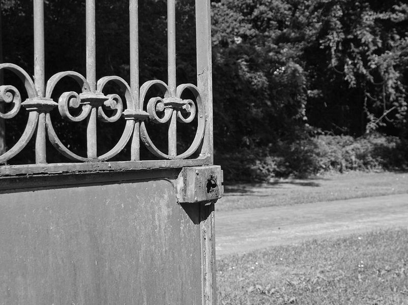 The Gate von Alex Davidse