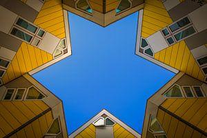 The star of Rotterdam van