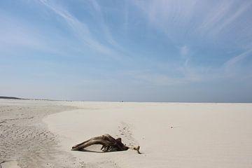 Uitgestrekte leegte von Lis Zandbergen