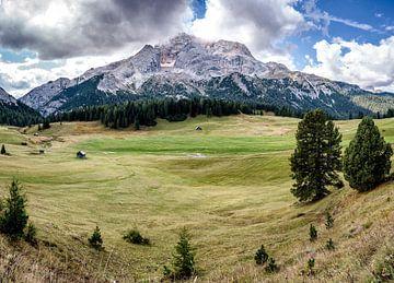 Panorama in Südtirol von Steffen Peters