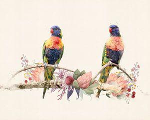 2 regenboog vogeltjes van Studio Nooks