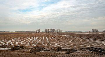 Nederlandse akker in het winter seizoen van Ruud Morijn