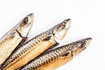 Gedämpfte Makrelen von MICHEL WETTSTEIN