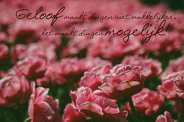 Tulpenveld met christelijke quote van Wilma Meurs