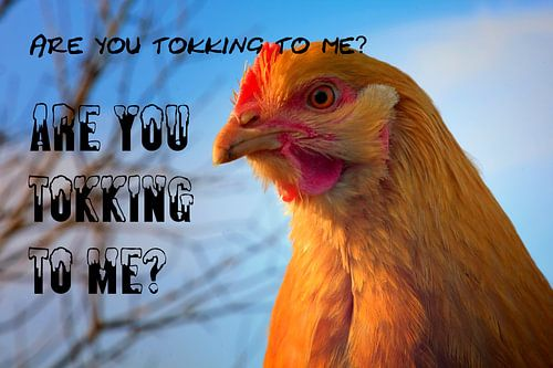 Are You Tokking To Me?