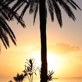 Zonsondergang in Tunesie van b- Arthouse Fotografie