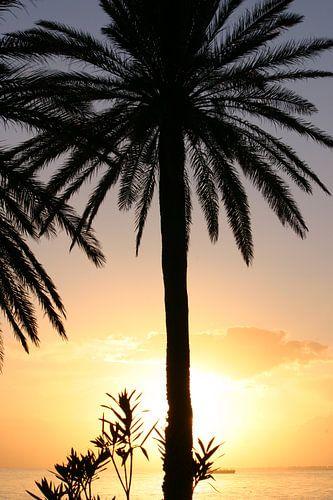 Zonsondergang in Tunesie van