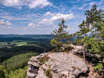 Uitzicht vanaf de Papststein naar het Elbezandsteengebergte van Animaflora PicsStock
