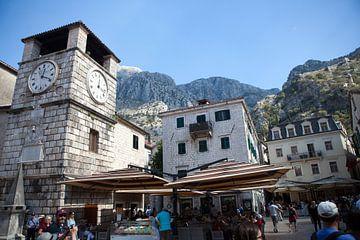 Kotor - Montenegro van t.ART