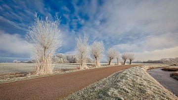 Typisch Nederlands polder landschap van eric van der eijk