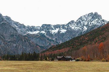 Herfstig Oostenrijks berglandschap