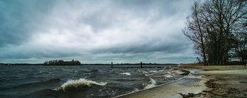 Windy van Gert Brink