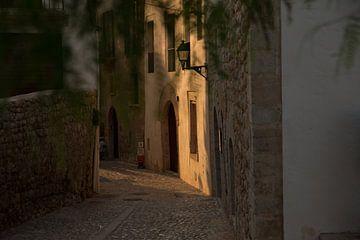 Ibiza Sunlight van maria heuving