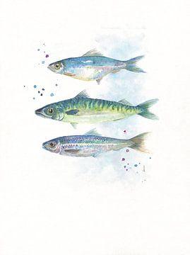 Fisch in Aquarell von Atelier DT