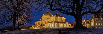 Schloss Solitude umrahmt von Baumzweigen von Keith Wilson Photography