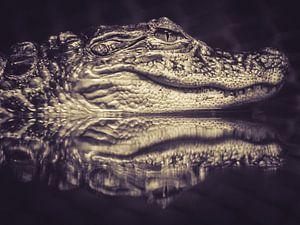 Alligator in rust.