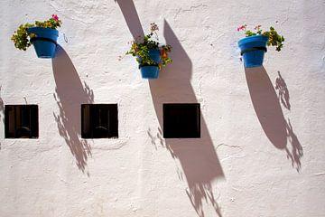 Wit en blauw  van Jo Miseré