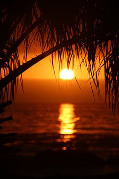 Tropische zonsondergang van Ivo Schuckmann