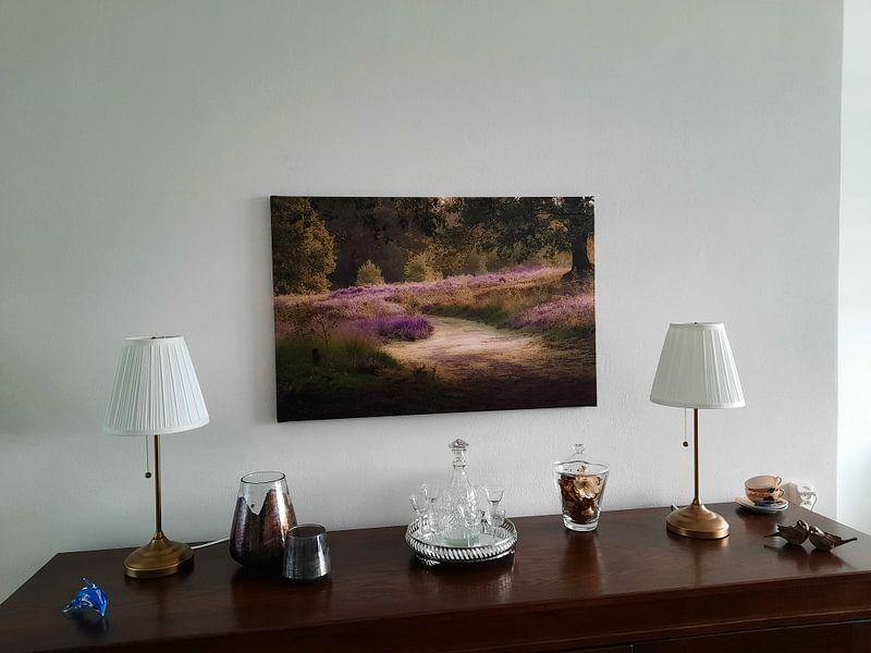 Kundenfoto: Gehen auf der Heide von Tania Perneel