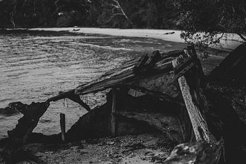 Schafwrack in schwarz-weiß von Ennio Brehm