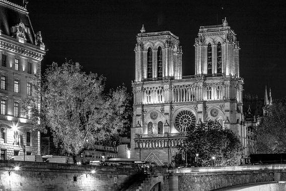 Zwart-Wit: Notre Dame in Parijs - laat in de avond