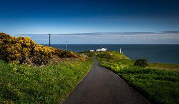 De weg naar Baily Lighthouse van Ronne Vinkx