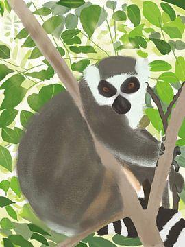 Ringelschwanz Lemur im Dschungel von Piev
