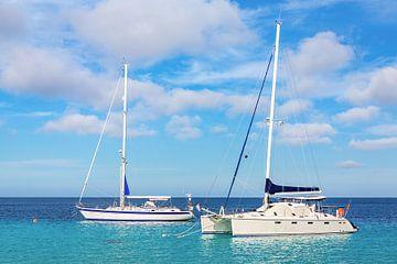 Twee zeilboten drijven op zee aan de kust van Bonaire van Ben Schonewille