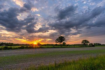 Schöner Sonnenaufgang mit orangefarbenen Himmel und Wolken von Dafne Vos