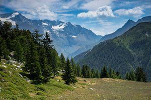 Bergweide in de Franse Alpen van