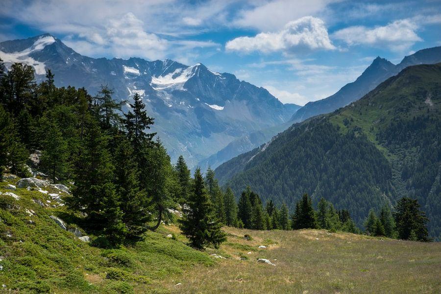 Bergweide in de Franse Alpen van Bas van Gelderen