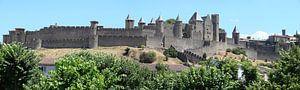 Carcassonne panorama van Carel van der Lippe