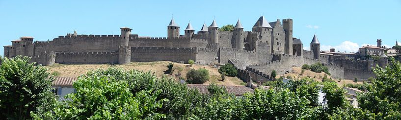 Carcassonne panorama sur Carel van der Lippe
